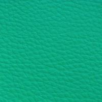 AUSTRAL - AGAVE_01001023