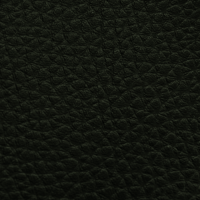 AUSTRAL - BLACK_01001001
