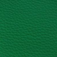 AUSTRAL - EVERGREEN_01001019