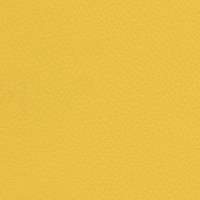 Acua Lis - Amarillo 21
