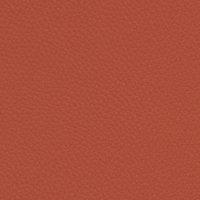 Acua Lis - Naranja 14