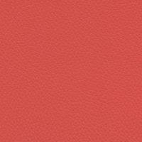 Acua Lis - Salmon 30