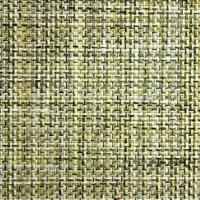 Linear - 813 Linen