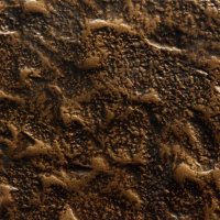 Magma Texture | T14