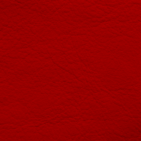 Natura - Cardinal_01104016