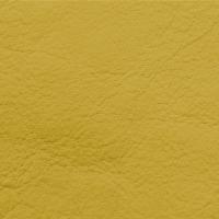 Natura - Old Gold_01104006