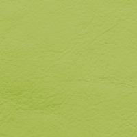 Natura - Pistachio_01104007