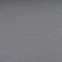 Valencia - 107-4020_Silver